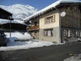 colchiques-hiver-jm-6238-74909